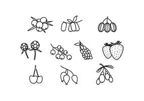 Livre Berries Linha Ícone Vector