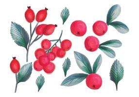 Mão, desenhado, Forrest, frutas