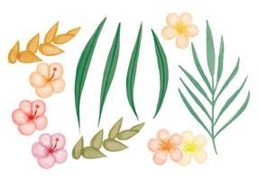 Vetorial, mão, desenhado, tropicais, flores