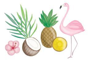 Vetorial, mão, desenhado, tropicais, elementos