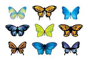 Conjunto de vetores mariposa mariposa
