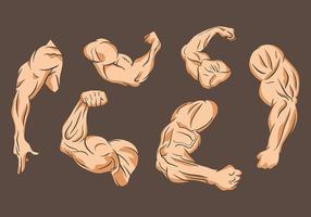 Flexionando ícones vetoriais vetor