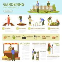 modelo de infográficos de jardinagem