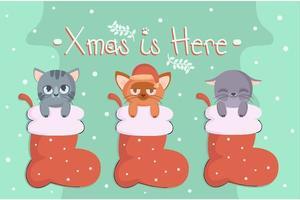 gatos de natal na meia vetor