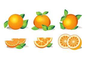 Conjunto de frutas isoladas clementina no fundo branco vetor
