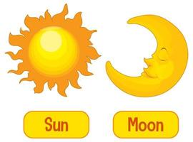 palavras opostas com sol e lua vetor