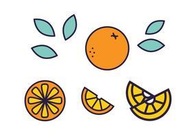 Fresco, citrino, fruta, vetorial