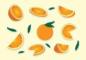 Vetor de clementina