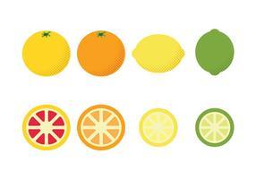Ícones lisos do vetor dos frutos