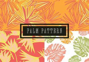 Teste padrão das folhas de palmeira vetor