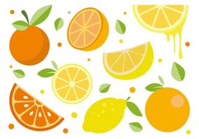 Vetor livre dos citrinos