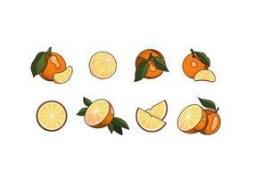Pacote de vetores gratuitos da Clementine