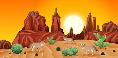 deserto com montanhas rochosas e paisagem de coiote na cena do pôr do sol vetor