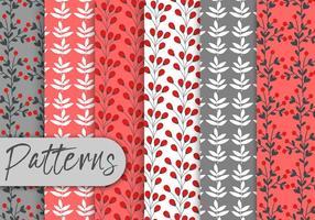 Conjunto de padrões vermelhos de baga vetor