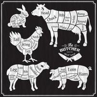 conjunto de fazenda de animais vetor