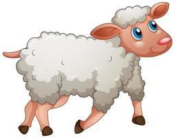 uma ovelha fofa em fundo branco vetor
