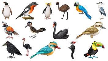 conjunto de diferentes estilos de desenho de pássaros isolado no fundo branco