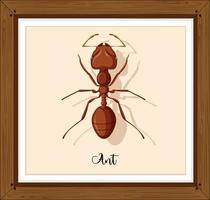 trabalhando a formiga em uma moldura de madeira