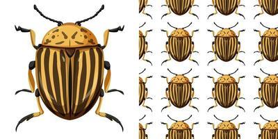 inseto besouro do colorado e fundo transparente
