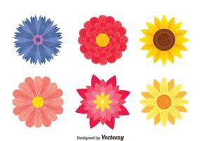 Vetor de coleção de flores bonitas