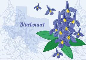 Flor Bluebonnet do Texas vetor