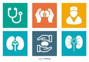 Coleção de ícones relacionados com urologia vetor