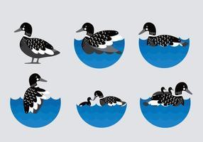 Ilustração plana do loon preto vetor plano