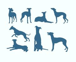 Silhuetas de cães galgo vetor