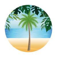 composição verão, praia e férias