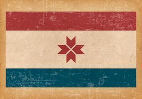 Bandeira de Mordovia do Grunge vetor