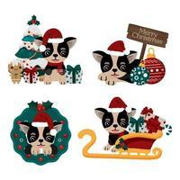 Conjunto de chihuahua fofo com chapéu de Papai Noel