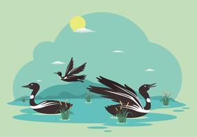 Ilustração de loon grátis vetor