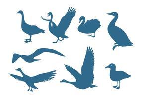 Silhuetas de aves aquáticas vetor