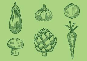 Ícones vetoriais de vegetais de estilo antigo Gravure vetor