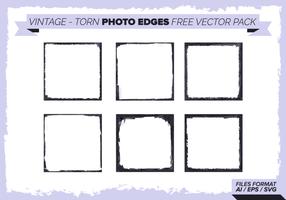 Bordas de fotos rasgadas no vintage pacote de vetores grátis