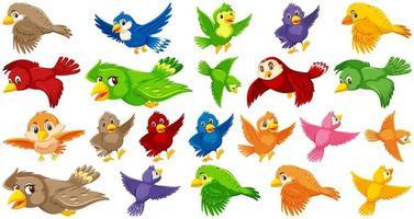 conjunto de personagem de desenho animado de pássaro vetor