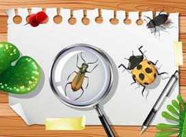 muitos insetos diferentes na mesa de perto vetor