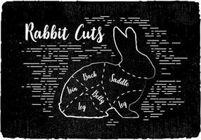 Livre coelho corta fundo do vetor