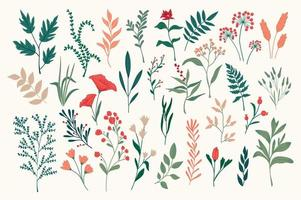 conjunto de objetos florais desenhados à mão