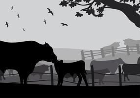 Angus vaca silhueta vector livre