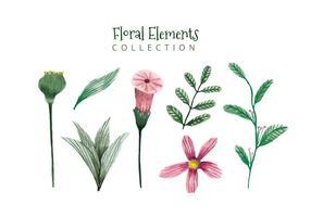 Cute Watercolor Elements Flores e folhas vetor