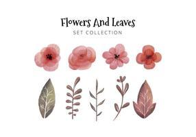 Coleção De Folhas E Flores De Aguarela vetor