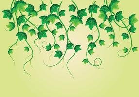 Escalando plantas venenosas vetor