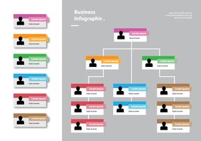 Cartão de cores Gráfico organizacional Infográfico vetor