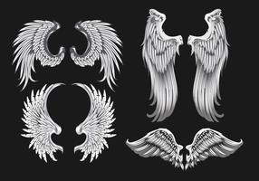 Ilustração das asas brancas vetor