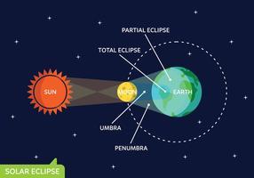 Conjunto de vetores da fase do sol