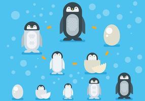 Ícones do vetor do ciclo de vida do pinguim