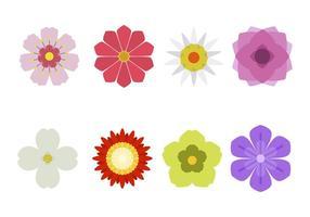 Vetores de flores planas