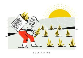 Camponês Cultivando E Plantando Ilustração De Vector De Arroz