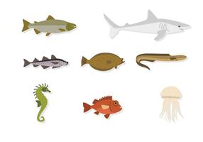 Vectores planos de animais do mar